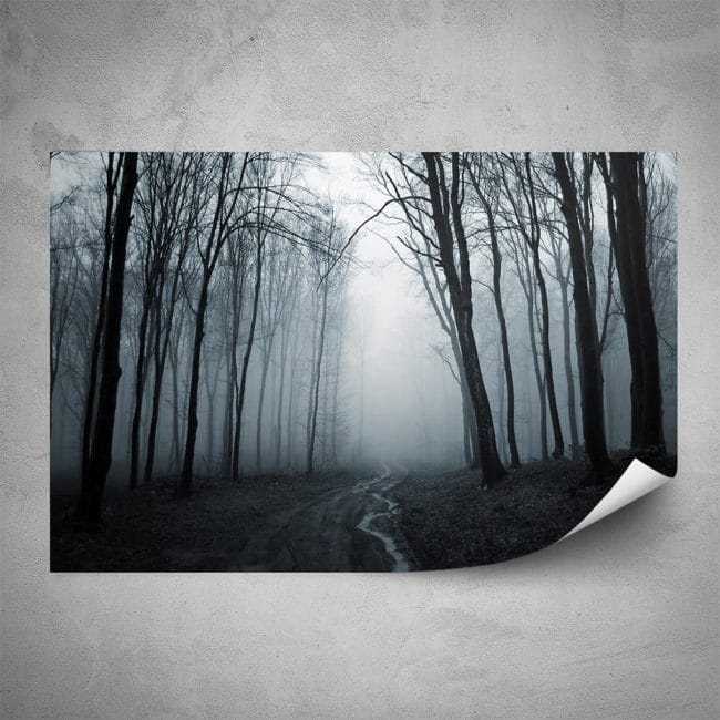 Plakát - Mlhavý les (60x40 cm) - PopyDesign
